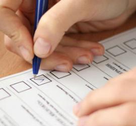 Кртинка выборы